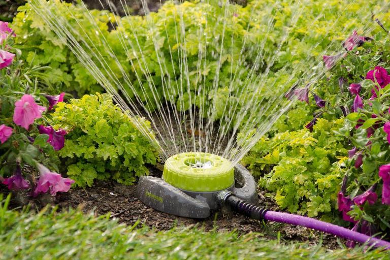 Поливаем сад правильно