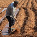 Орошение земель в Индии