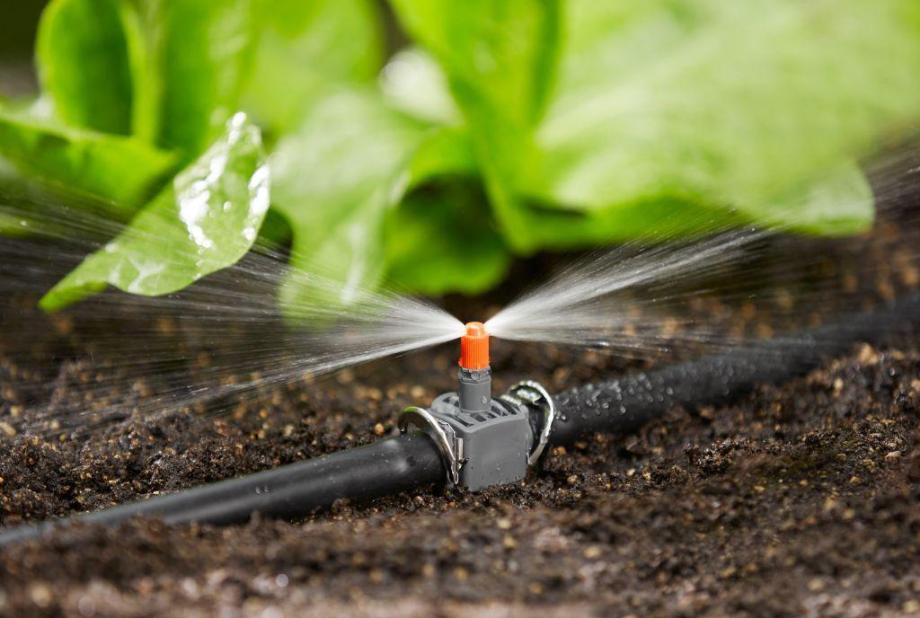 микроразбрызгиватель для полива растений