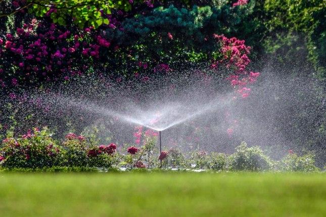 системы капельного полива в саду